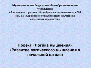 Муниципальное бюджетное общеобразовательное учреждение «Амгинская средняя общ