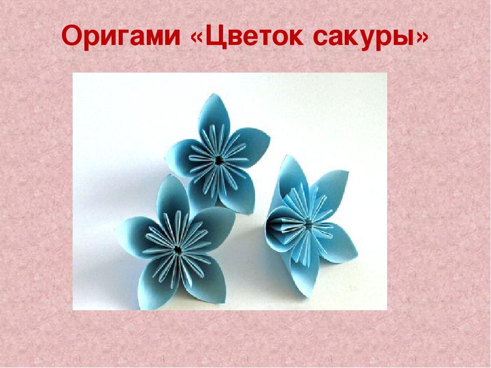 Оригами «Цветок сакуры»