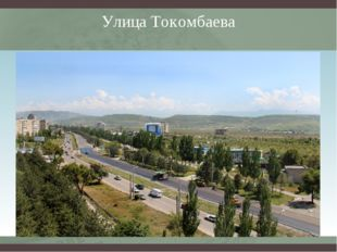 Улица Токомбаева