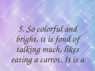 5. So colorful and bright, it is fond of talking much, likes eating a carrot.