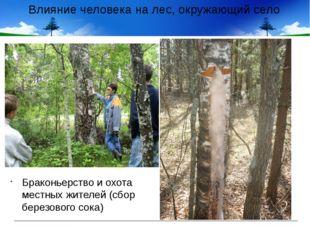 Влияние человека на лес, окружающий село Браконьерство и охота местных жителе