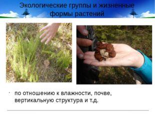 Экологические группы и жизненные формы растений по отношению к влажности, поч