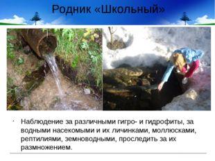 Родник «Школьный» Наблюдение за различными гигро- и гидрофиты, за водными нас