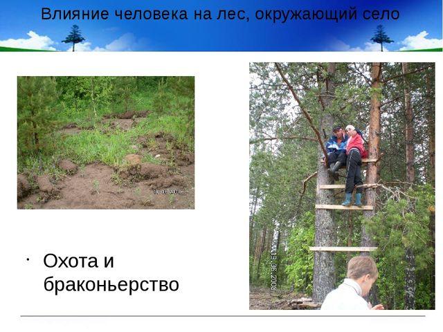 Влияние человека на лес, окружающий село Охота и браконьерство