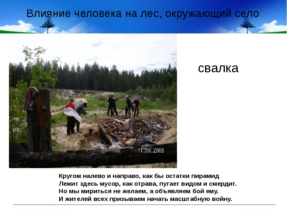 Влияние человека на лес, окружающий село свалка Кругом налево и направо, как...