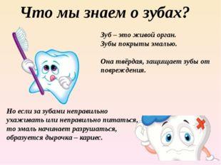 Что мы знаем о зубах? Зуб – это живой орган. Зубы покрыты эмалью. Она твёрдая