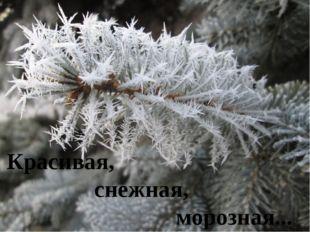 Красивая, снежная, морозная...