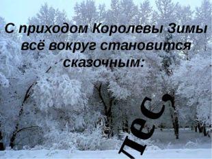 С приходом Королевы Зимы всё вокруг становится сказочным: лес,