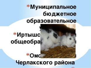 Муниципальное бюджетное образовательное учреждение Иртышская средняя общеобра