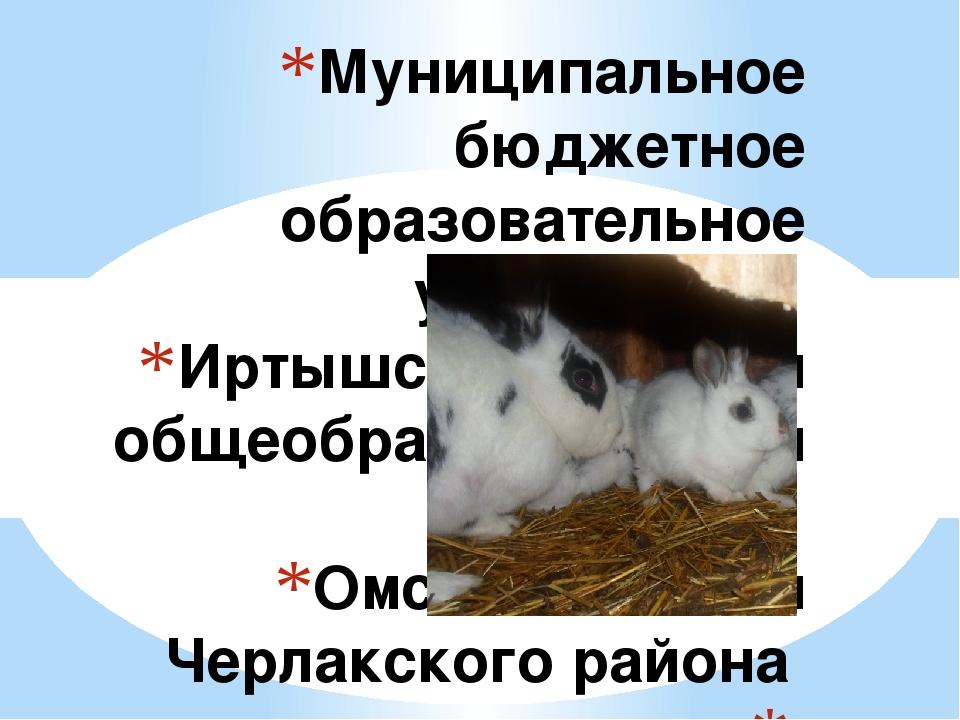 Муниципальное бюджетное образовательное учреждение Иртышская средняя общеобра...