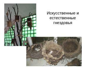 Искусственные и естественные гнездовья