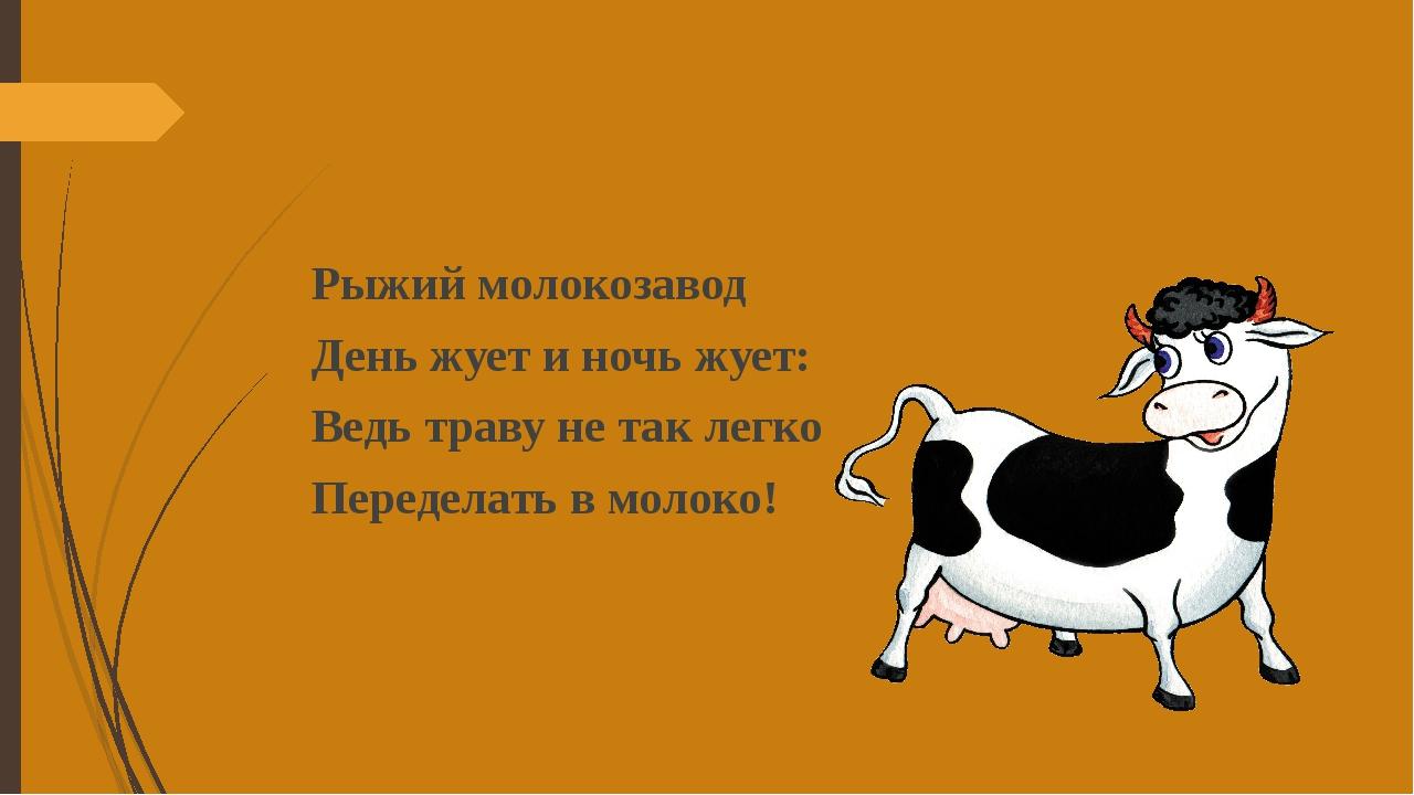 Рыжий молокозавод День жует и ночь жует: Ведь траву не так легко Переделать...