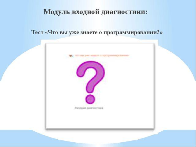 Модуль входной диагностики: Тест «Что вы уже знаете о программировании?»