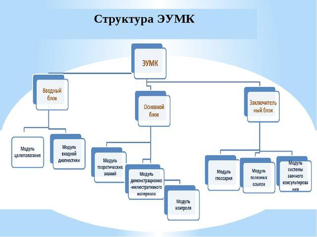 Структура ЭУМК