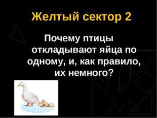 Желтый сектор 2 Почему птицы откладывают яйца по одному, и, как правило, их н