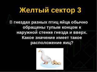 Желтый сектор 3 В гнездах разных птиц яйца обычно обращены тупым концом к нар