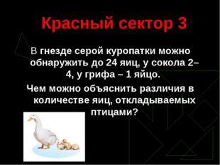 Красный сектор 3 В гнезде серой куропатки можно обнаружить до 24 яиц, у сокол
