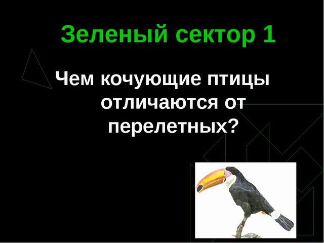 Зеленый сектор 1 Чем кочующие птицы отличаются от перелетных?