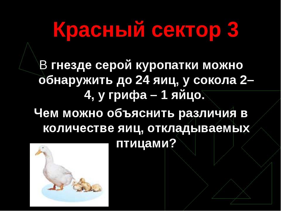 Красный сектор 3 В гнезде серой куропатки можно обнаружить до 24 яиц, у сокол...