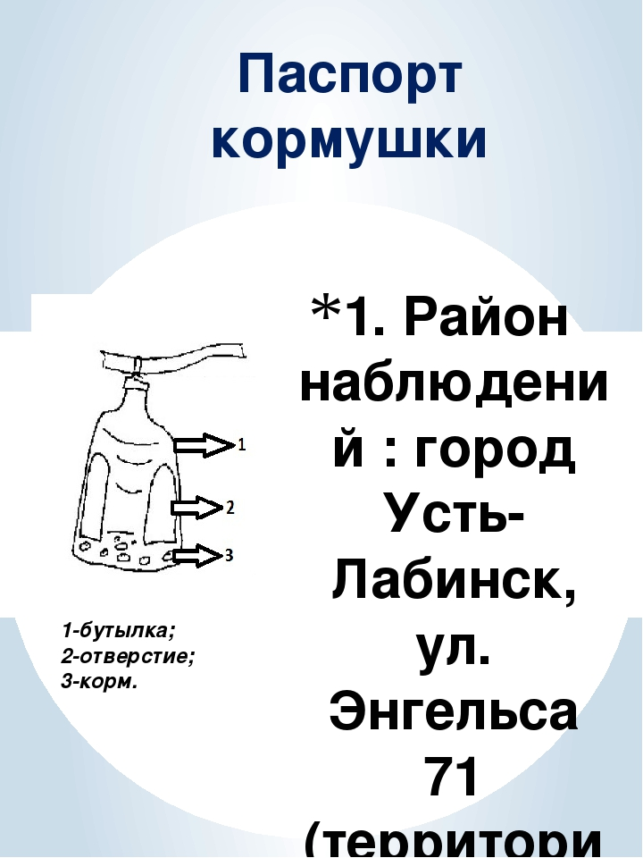 1. Район наблюдений : город Усть-Лабинск, ул. Энгельса 71 (территория МБОУ СО...