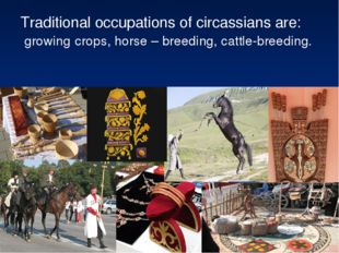 Traditional occupations of circassians are: growing crops, horse – breeding,
