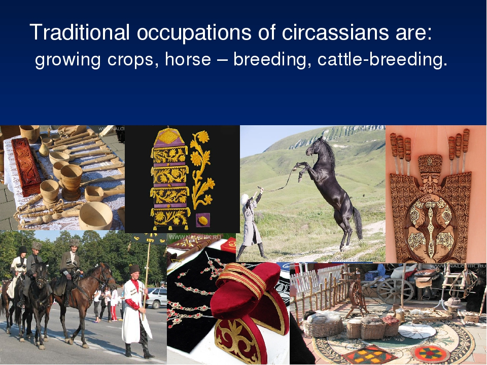 Traditional occupations of circassians are: growing crops, horse – breeding,...