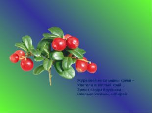 Журавлей не слышны крики – Улетели в тёплый край… Зреют ягоды брусники – Скол