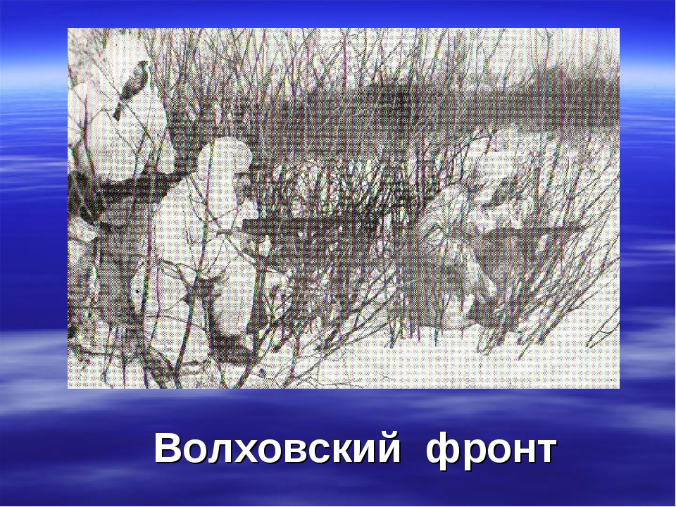 Волховский фронт