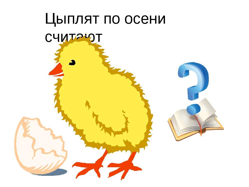 Цыплят по осени считают картинки с надписями