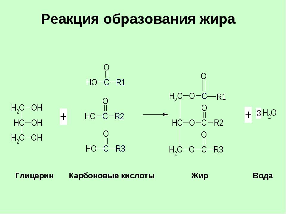 Реакция образования жира  Глицерин Карбоновые кислоты Жир  Вода