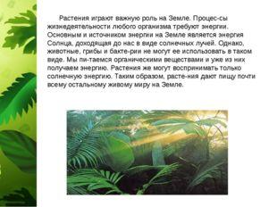 Растения играют важную роль на Земле. Процес-сы жизнедеятельности любого орг