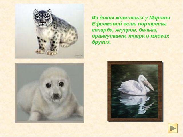 Из диких животных у Марины Ефремовой есть портреты гепарда, ягуаров, белька,...