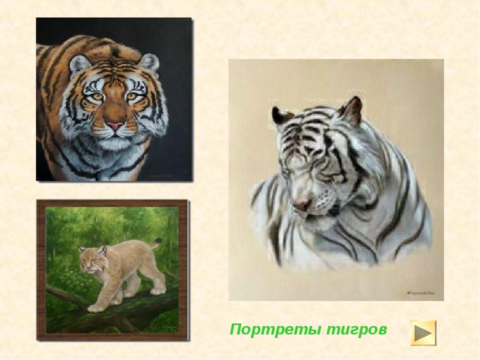 Портреты тигров
