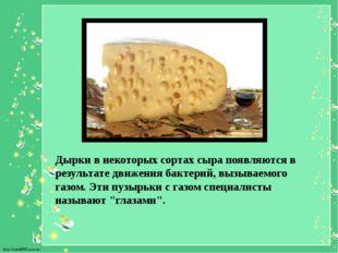 Дырки в некоторых сортах сыра появляются в результате движения бактерий, вызы