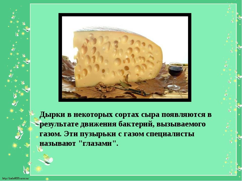 Дырки в некоторых сортах сыра появляются в результате движения бактерий, вызы...