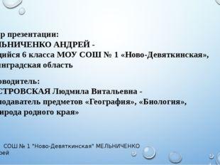 Автор презентации: МЕЛЬНИЧЕНКО АНДРЕЙ - учащийся 6 класса МОУ СОШ № 1 «Ново-Д