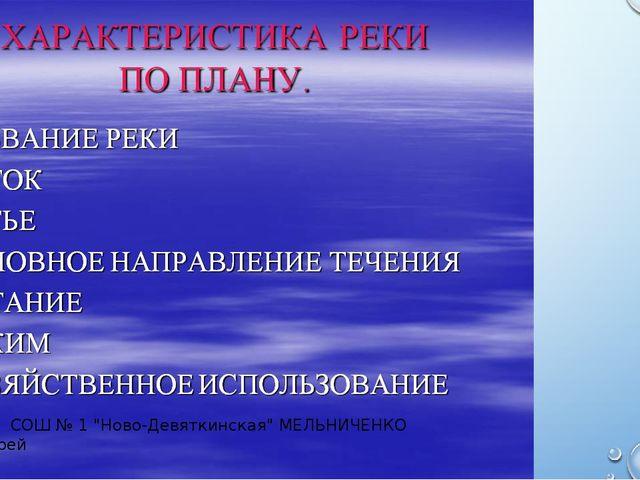 """МОУ СОШ № 1 """"Ново-Девяткинская"""" МЕЛЬНИЧЕНКО Андрей"""