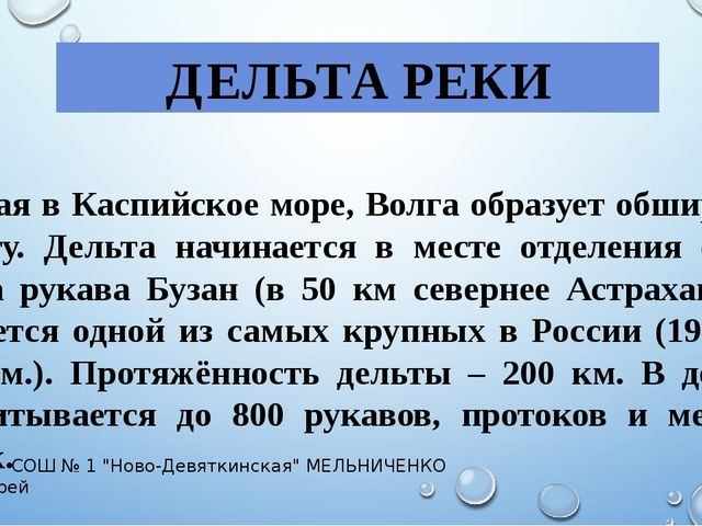 ДЕЛЬТА РЕКИ Впадая в Каспийское море, Волга образует обширную дельту. Дельта...
