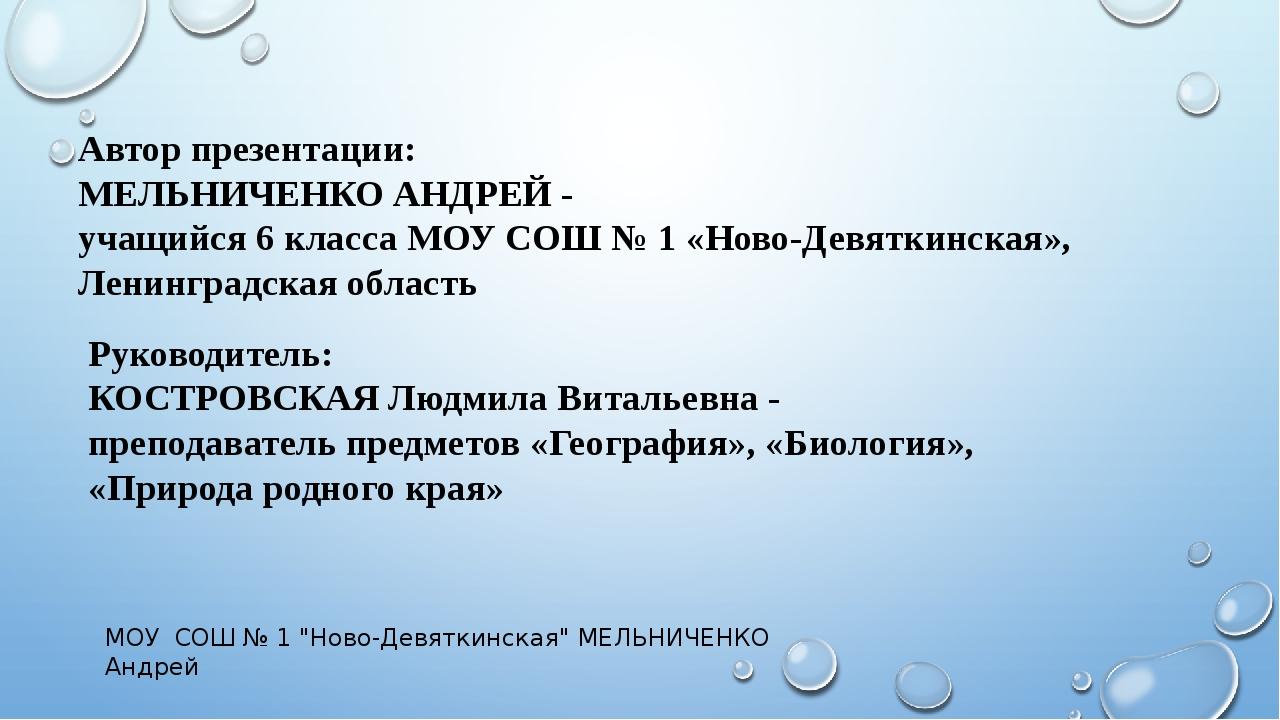 Автор презентации: МЕЛЬНИЧЕНКО АНДРЕЙ - учащийся 6 класса МОУ СОШ № 1 «Ново-Д...