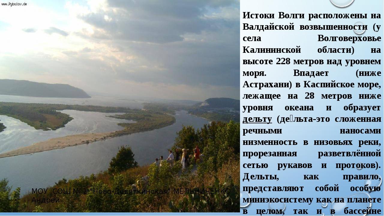 Истоки Волги расположены на Валдайской возвышенности (у села Волговерховье Ка...