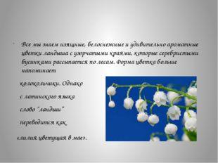 Все мы знаем изящные, белоснежные и удивительно ароматные цветки ландыша с у