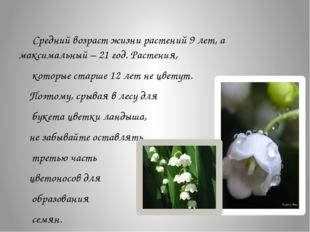Средний возраст жизни растений 9 лет, а максимальный – 21 год. Растения, к