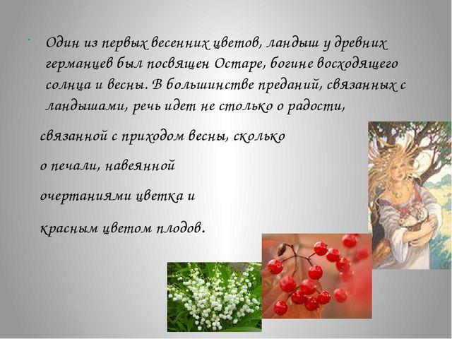 Один из первых весенних цветов, ландыш у древних германцев был посвящен Оста...