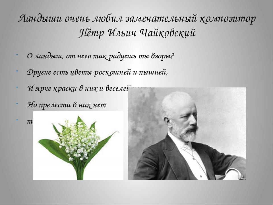 Ландыши очень любил замечательный композитор Пётр Ильич Чайковский О ландыш,...