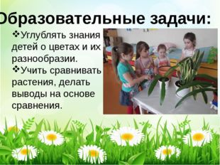 Образовательные задачи: Углублять знания детей о цветах и их разнообразии. Уч