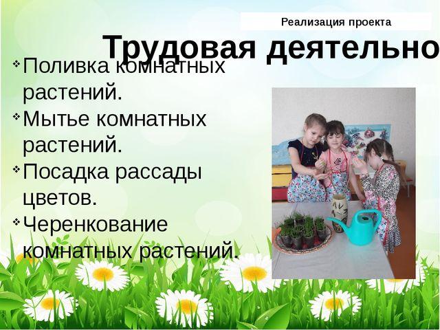 Реализация проекта Трудовая деятельность Поливка комнатных растений. Мытье ко...