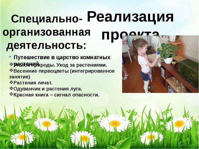 Реализация проекта Специально-организованная деятельность: Путешествие в царс...