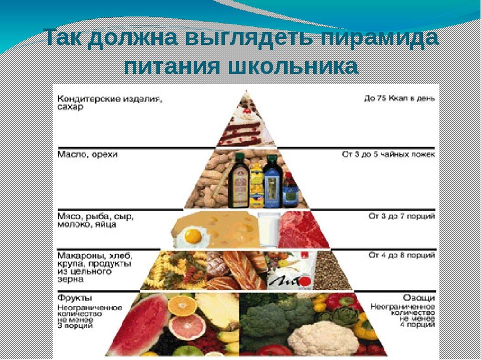 Так должна выглядеть пирамида питания школьника