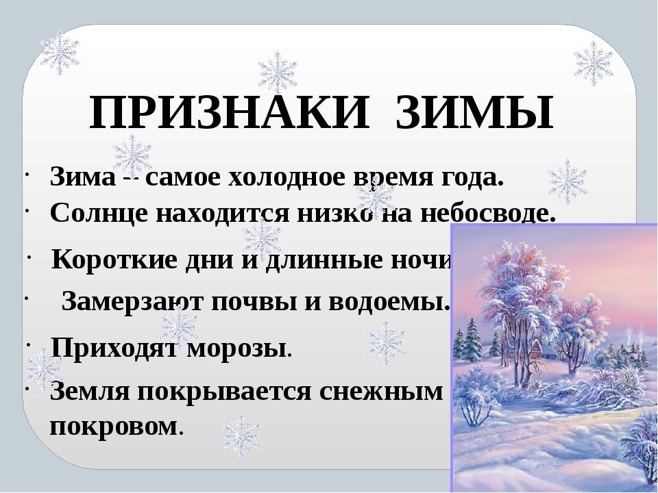 патология рассказ о зиме с картинками вся