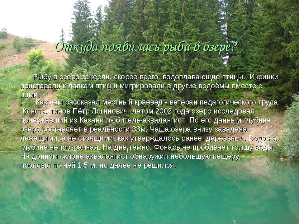 Откуда появилась рыба в озере? Рыбу в озеро занесли, скорее всего, водоплаваю...